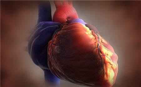 哈尔滨哪里医院可以治疗心脏绞痛