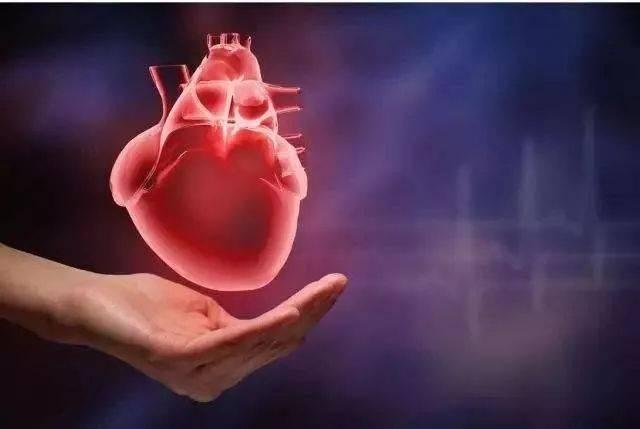 哈尔滨看心脏功能衰竭去哪里好