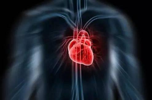 哈尔滨治疗心脏早博好医院
