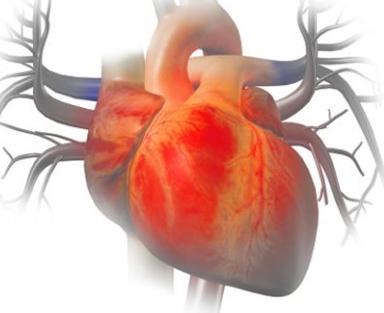 哈尔滨治心脏供血不足的费用