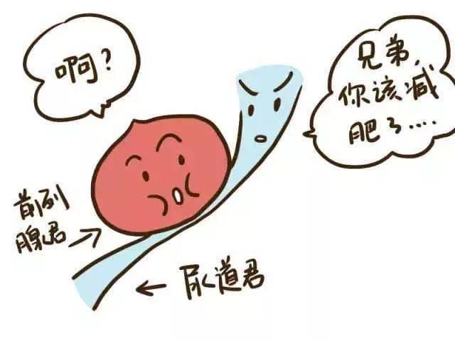 《黑龙江哪个医院治前列腺肥大权威》