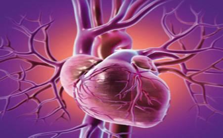 《哈尔滨哪里医院可以治疗心脏早搏》