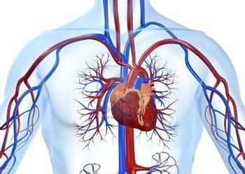 哈尔滨治心脏功能衰竭大概费用