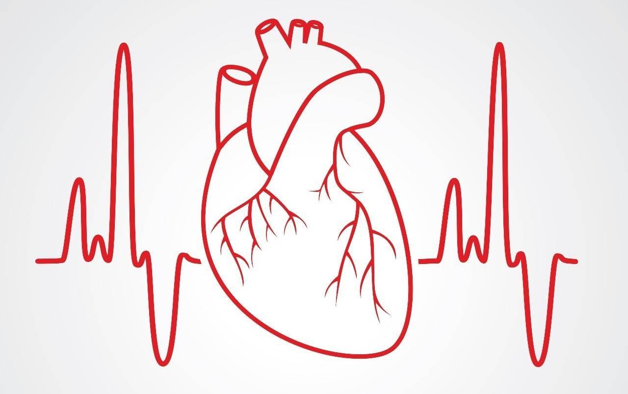 哈尔滨治疗心血管狭窄费用多少
