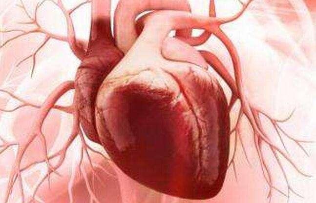 哈尔滨医院看心肌梗塞