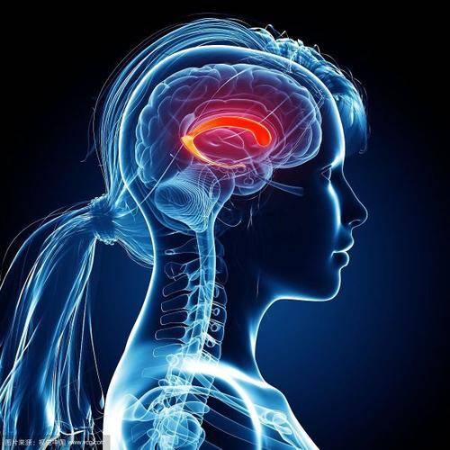 哈尔滨看脑胶质瘤的医院